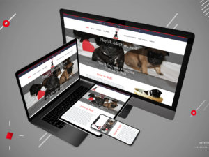 French Kiss-A-Bulls Responsive Display
